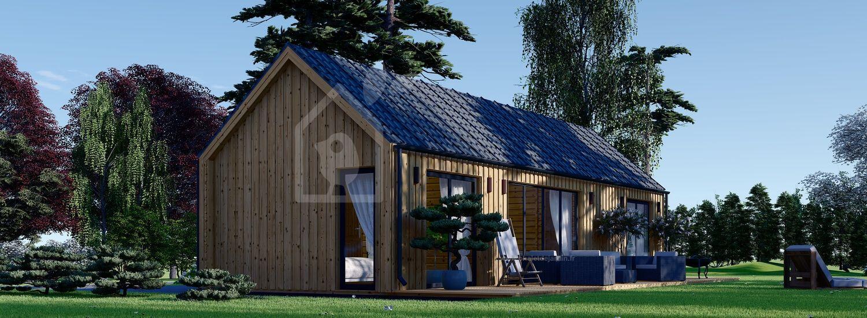 Chalet en bois habitable ADA (Isolé, 44 mm + bardage), 50 m² visualization 1
