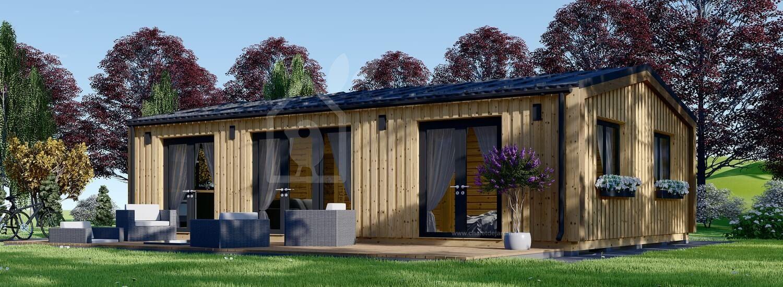 Chalet en bois SELENE (44 mm + bardage), 63 m² visualization 1